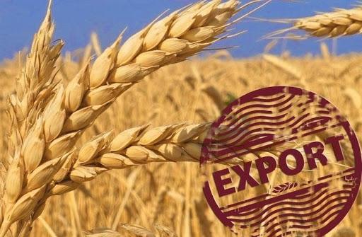 России придется бороться за сохранения лидерства на мировом рынке зерна