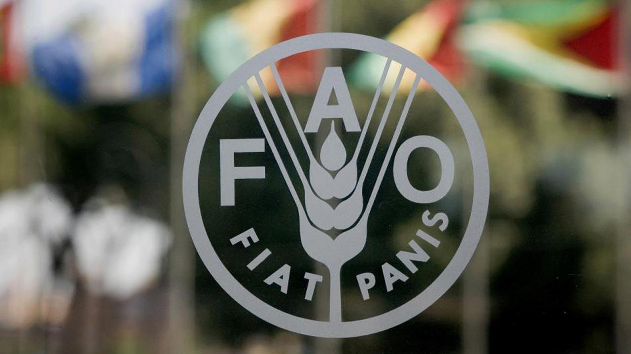 ООН, ВТО и ВОЗ предупредили о дефиците продовольствия